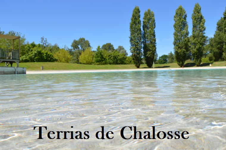 You are currently viewing Tierras de Chalosse